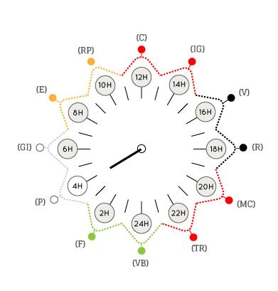 Bien-aimé Horloge circadienne EV99